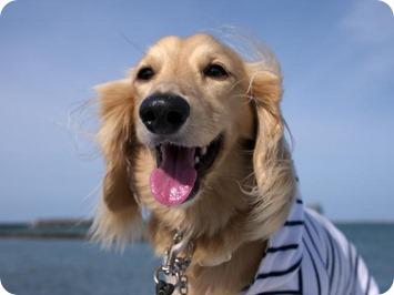 風が気持ちいいです!