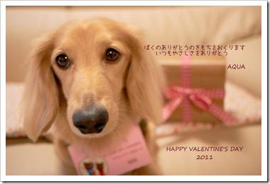 2011バレンタイン♪