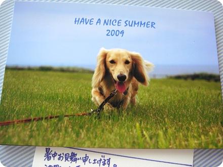 2009 暑中お見舞い